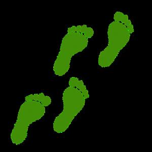 4つの足跡