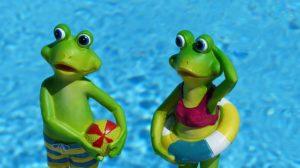 カエルとプール