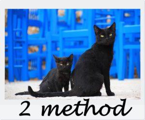2匹の猫と2methodの文字