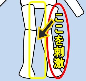 X脚の刺激の方法
