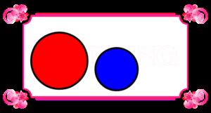 2つの丸の比較 大中