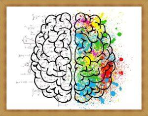 脳が活性化
