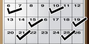 週に2回のチェックをしたカレンダー