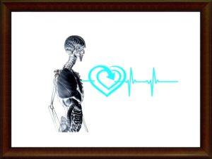 骨と心臓のグラフ
