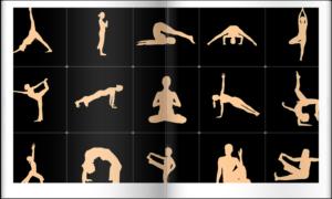 色々な運動