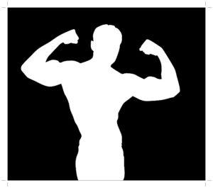 筋肉のシルエット