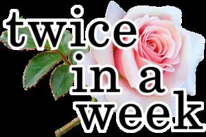 バラに「twic in a week」の文字