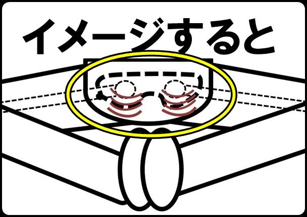股関節のイメージ