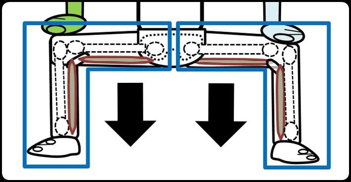 四股 股関節の拡大