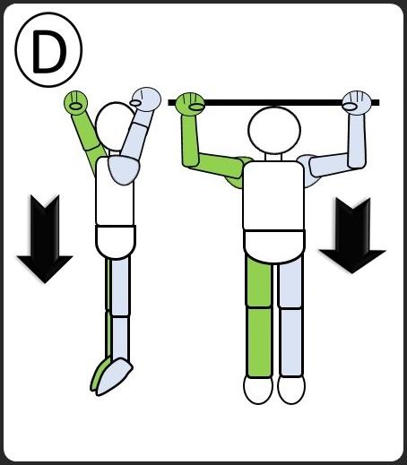 けんすい 腕を広げた 体を落とす