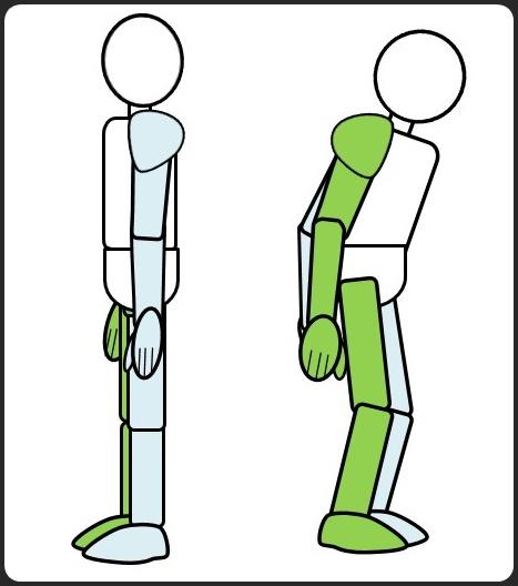 正しい姿勢と猫背の違い