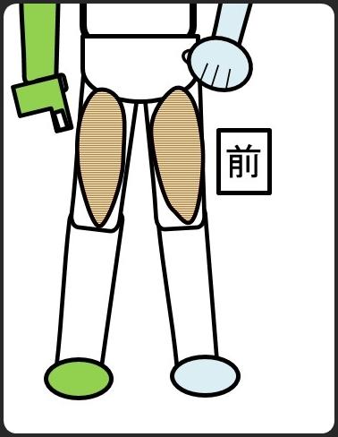 スクワットで鍛えられる筋肉 大腿四頭筋