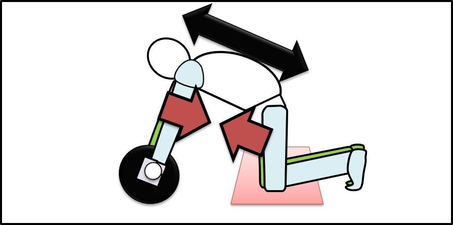 腹筋と背筋の伸び縮み その1