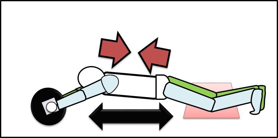 腹筋と背筋の伸び縮み その2