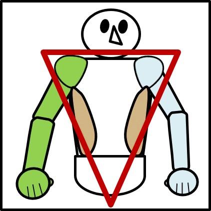 腹斜筋を鍛えると、逆三角形のシルエットが手に入る