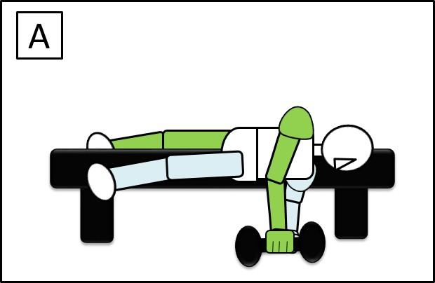 ダンベルを持って、ベンチに寝ころび、横に落としている姿