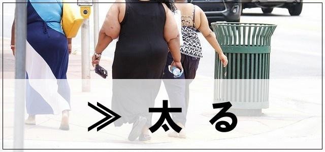 太るのカテゴリーについて